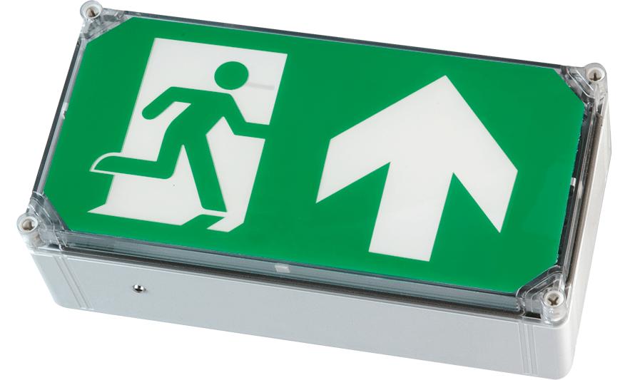 WP EXIT BOX weatherproof emergency exit box product photograph